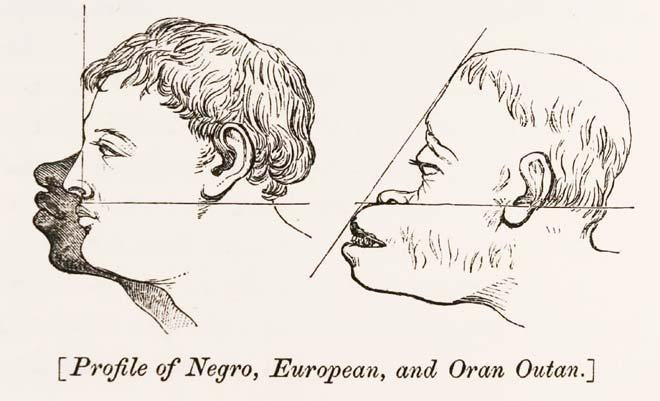 Abraham Lincoln and the Politics of Black Colonization