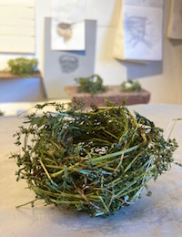 Bird's nest crafted by Honeycutt using various organic material